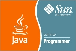 Sun Certified Programmer for Java 5 (SCJP)